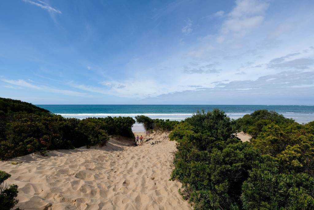 Whitesbeach Guesthouse - Torquay Beach